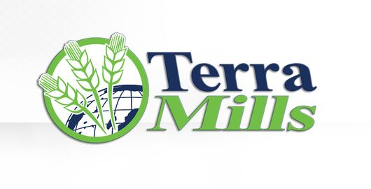 Galactic Guide Terra Mills Titelbild.jpg