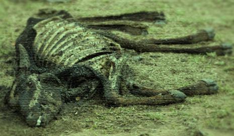 Galactapedia Massacre of Garron II.png