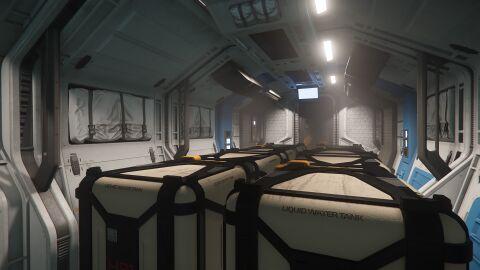 AEGS Avenger Titan Frachtbereich beladen.jpg